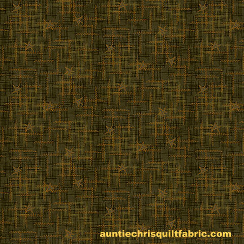 Cotton,Quilt,Fabric,Best,of,Days,Star,Texture,Green,Janet,Rae,Nesbitt,,quilt backing, dresses, quilt fabric,cotton material,auntie chris quilt,sewing,crafts,quilting,online fabric,sale fabric
