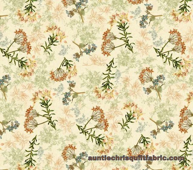 Cotton Quilt Fabric Wind Apple Oak Avenue Floral Cream Multi - product images  of