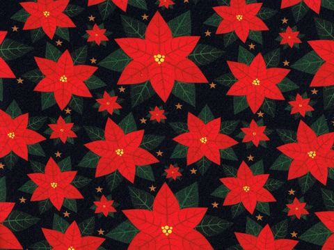Cotton,Quilt,Fabric,Christmas,Traditional,Poinsettias,Black,Multi,,quilt backing, dresses, quilt fabric,cotton material,auntie chris quilt,sewing,crafts,quilting,online fabric,sale fabric
