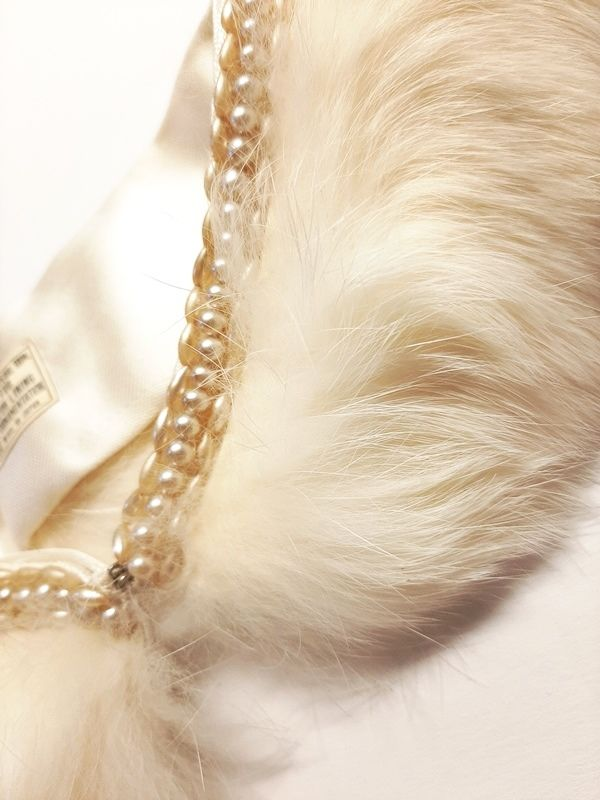 Vintage 1950s White Rabbit Fur Collar with Pearl Trim For Sweater Japan  - product images  of