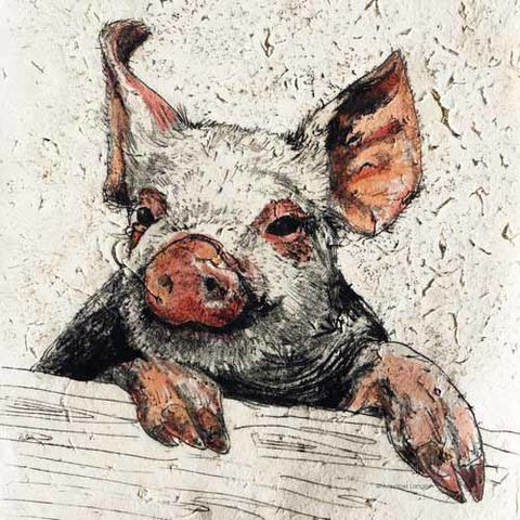 Farmyard,-,Piggy,mini,print,Farmyard Pig mini print