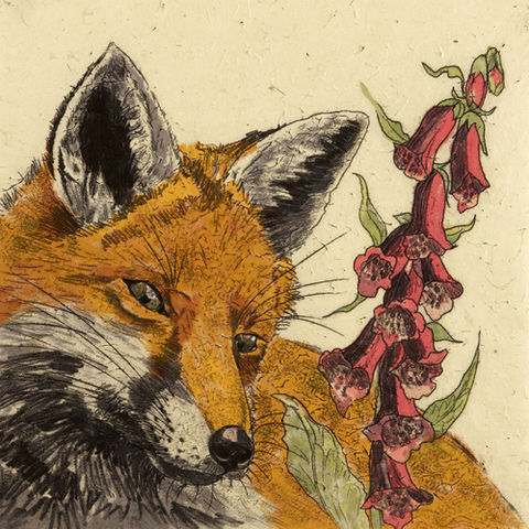 Wildlife,Fox,mini,print,Fox mini print