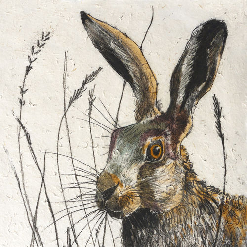 Wildlife Hare mini print - product images