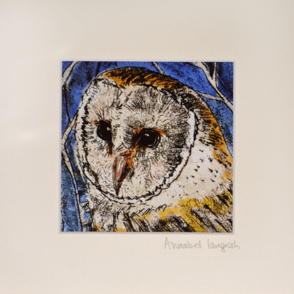 Wildlife Barn Owl mini print - product images  of