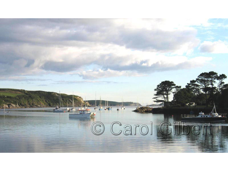 Castlehaven Harbour <p>- photo by Carol Gilbert - product image