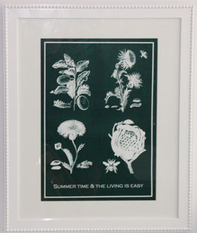 Summertime,Botanical Maria Sibylla Merian Silk Screen Print
