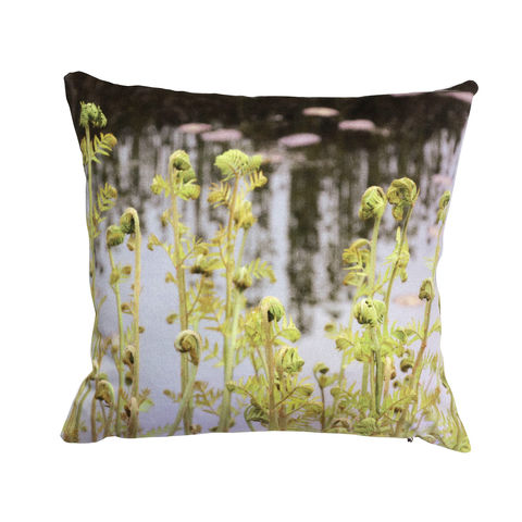 Fern,Cushion, Scotney Castle, English, Cushion