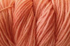 Bay,Orange,Hand,Dyed,Merino,Yarn,DK,/,Sport,Weight,Hand Dyed Merino Wool Yarn DK / Sport Orange Salmon Coral
