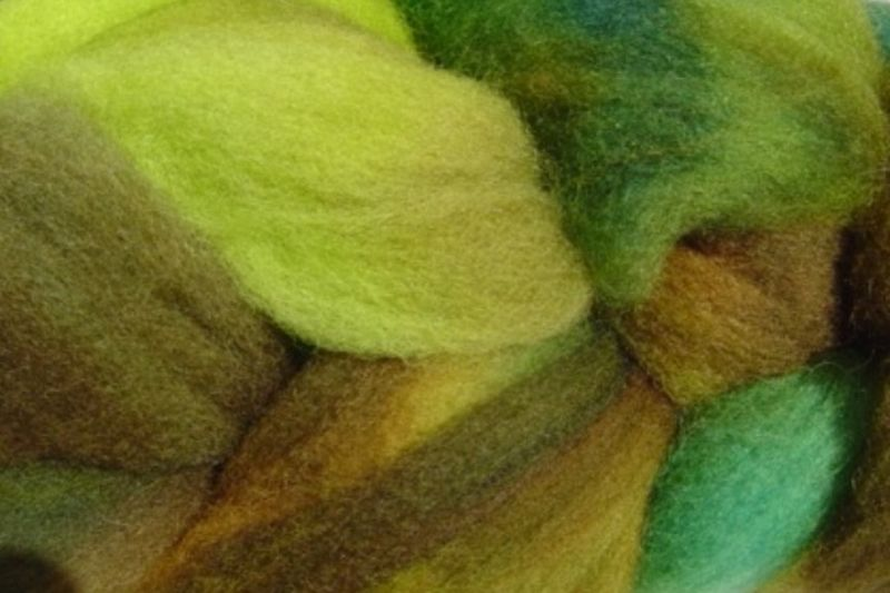 Rain Forest Hand Dyed Wool Roving - product image