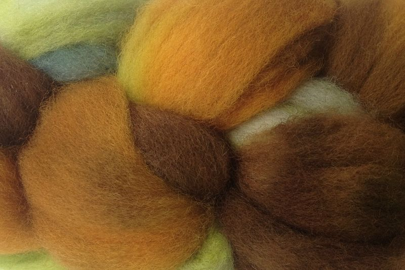 Fallen Acorn Hand Dyed Wool Roving - product image