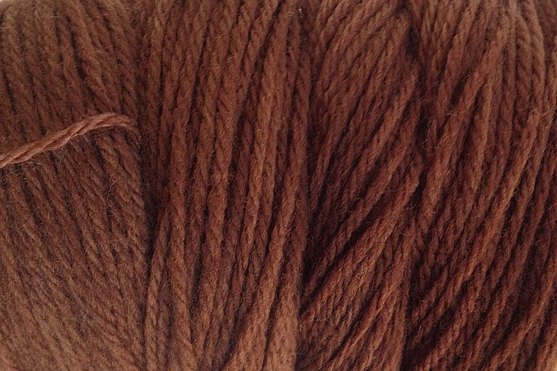 Bean Brown Hand Dyed Merino Wool Yarn DK / Sport Weight - product image