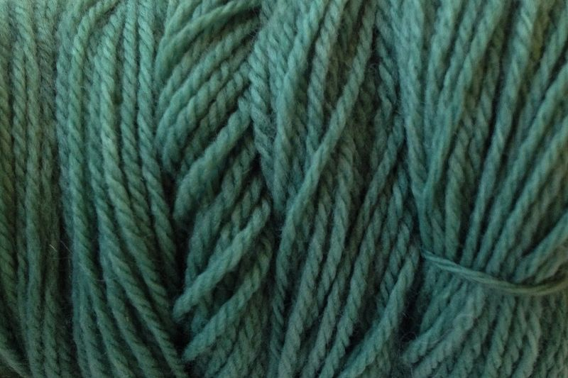 Avocado Green Hand Dyed Merino Wool Yarn Worsted Wt - product image