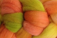 Squash,Blossom,Hand,Dyed,Wool,Roving,Wool Roving Hand Dyed Orange Squash Blossom eweandmeyarns.com
