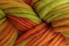 Squash,Blossom,Hand,Dyed,Wool,Pencil,Roving,Bulky Yarn Hand Dyed Orange and Green eweandmeyarns.com