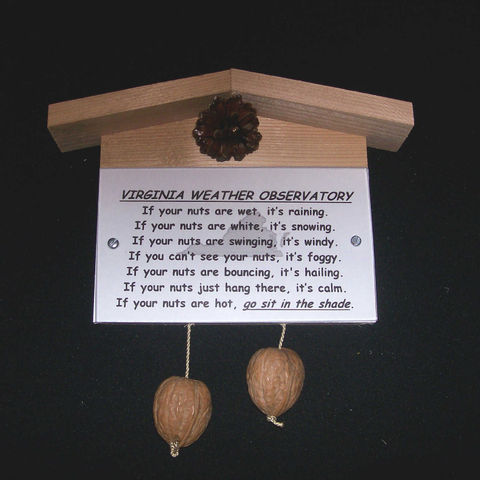 Virginia,weather,observatory,,humorous,,gag,gift,,practical,joke, weather, weather observatory, weather station, gag gift, practical joke, novelty, sign, nuts, hillbilly, redneck