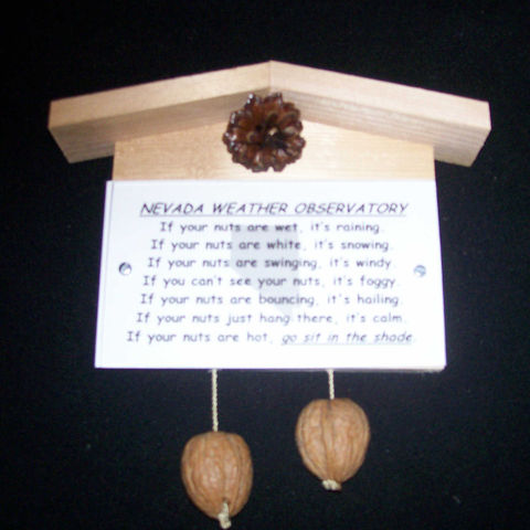 Nevada,weather,observatory,,humorous,,gag,gift,,practical,joke, weather, weather observatory, weather station, gag gift, practical joke, novelty, sign, nuts, hillbilly, redneck