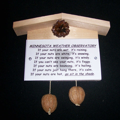 Minnesota,weather,observatory,,humorous,,gag,gift,,practical,joke, weather, weather observatory, weather station, gag gift, practical joke, novelty, sign, nuts, hillbilly, redneck