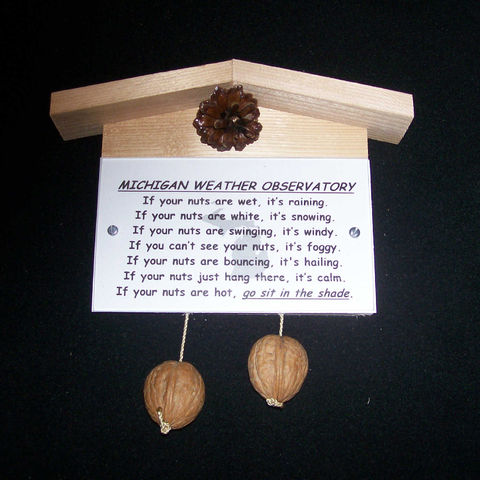 Michigan,weather,observatory,,humorous,,gag,gift,,practical,joke, weather, weather observatory, weather station, gag gift, practical joke, novelty, sign, nuts, hillbilly, redneck