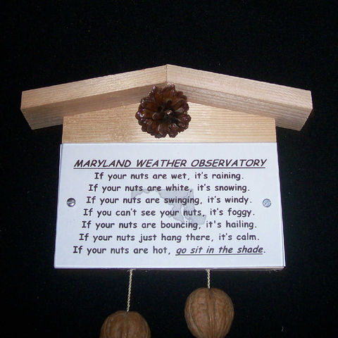 Maryland,weather,observatory,,humorous,,gag,gift,,practical,joke, weather, weather observatory, weather station, gag gift, practical joke, novelty, sign, nuts, hillbilly, redneck