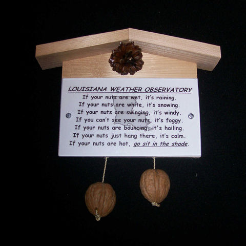 Louisiana,weather,observatory,,humorous,,gag,gift,,practical,joke, weather, weather observatory, weather station, gag gift, practical joke, novelty, sign, nuts, hillbilly, redneck