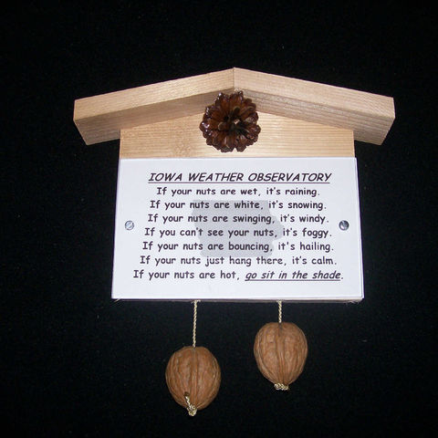 Iowa,weather,observatory,,humorous,,gag,gift,,practical,joke, weather, weather observatory, weather station, gag gift, practical joke, novelty, sign, nuts, hillbilly, redneck