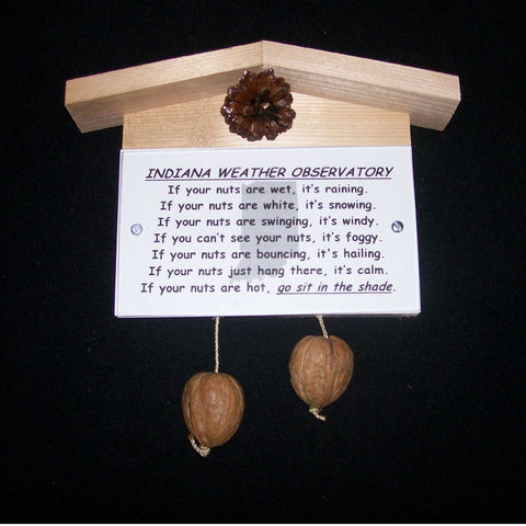 Indiana,weather,observatory,,humorous,,gag,gift,,practical,joke, weather, weather observatory, weather station, gag gift, practical joke, novelty, sign, nuts, hillbilly, redneck