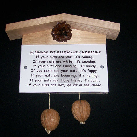 Georgia,weather,observatory,,humorous,,gag,gift,,practical,joke, weather, weather observatory, weather station, gag gift, practical joke, novelty, sign, nuts, hillbilly, redneck