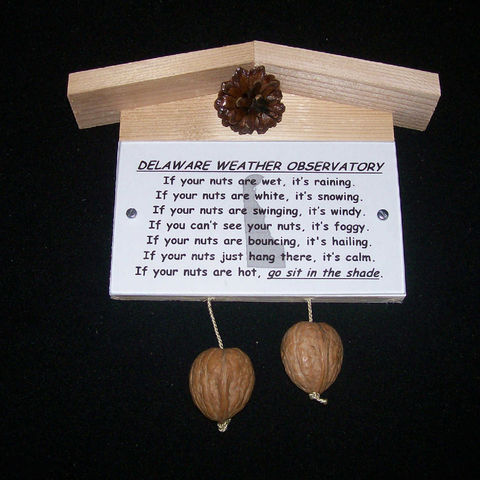 Delaware,weather,observatory,,humorous,,gag,gift,,practical,joke, weather, weather observatory, weather station, gag gift, practical joke, novelty, sign, nuts, hillbilly, redneck