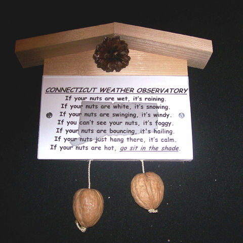 Connecticut,weather,observatory,,humorous,,gag,gift,,practical,joke, weather, weather observatory, weather station, gag gift, practical joke, novelty, sign, nuts, hillbilly, redneck