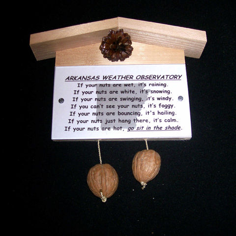 Arkansas,weather,observatory,,humorous,,gag,gift,,practical,joke, weather, weather observatory, weather station, gag gift, practical joke, novelty, sign, nuts, hillbilly, redneck