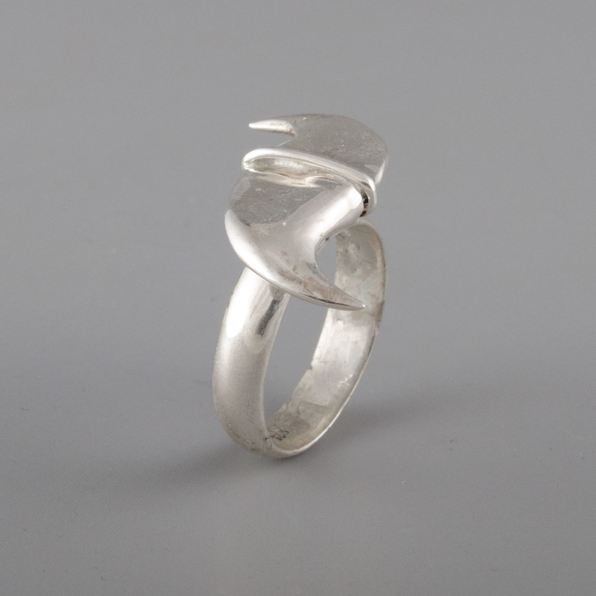 Sterling Silver Lion Claw Ring - product image