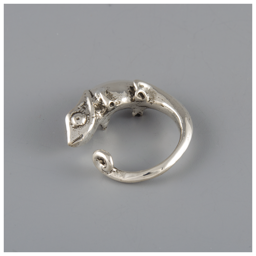 Sterling Silver Mini Chameleon Ring - product image