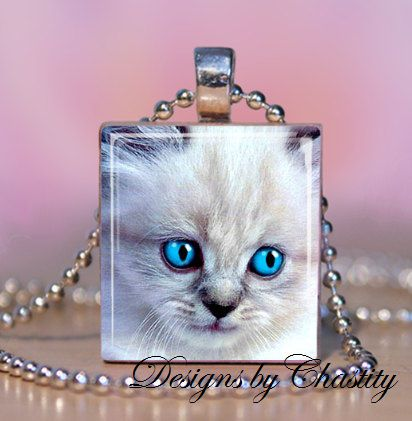 Pretty,Kitty,Scrabble,Necklace,Jewelry, Pendant, Art, altered art, kitty, cat, kitten, blue eyes, white, charm necklace, scrabble tile, silver ball chain, Designs by Chastity, perfect gift