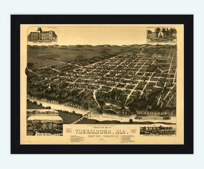 Panoramic View of Tuscaloosa Alabama 1887 - product image
