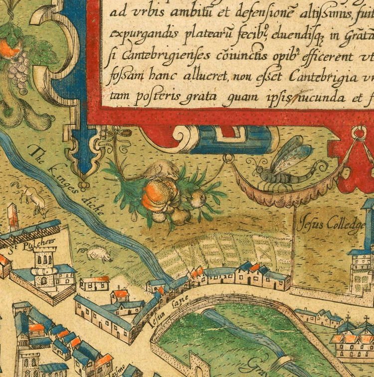 Old Map of Cambridge 1574 United Kingdom - product images  of