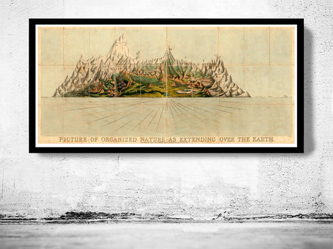 Comparative,Mountains,of,the,World,1828,Art,Reproduction,Open_Edition,map,old,vintage,plan,illustration,antique,gravures,historic_map,mountains,rivers,comparative,rivers_of_the_world,river_maps
