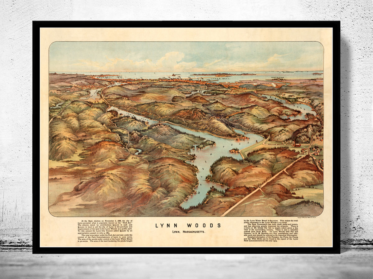 Old Map of Lynn Woods 1904 Massachusetts  - product images  of