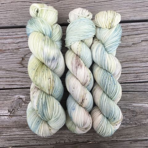 Diddley-Eye,~Leap,Year,inspired,yarn, kettle dyed, Leap Year, Potions