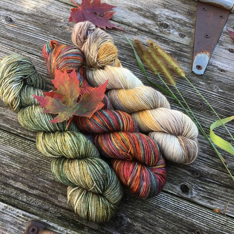 Woodland,Harvest,Kit,yarn, Hand dyed, kettle dyed, wool, handdyed, fade kit, find your fade, so faded, comfort fade