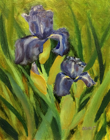 Floral,Iris,Original,Oil,Painting,on,Canvas,,Duo,Dance,iris, green, purple, blue, diane hunt studio, floral, flowers, oil painting, painting, alla prima, art, gardenscape, flower garden