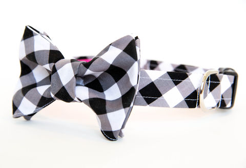 Dog,Bowtie,Collar,-,Black,Gingham,dog collar, dog bow tie, dog bowtie, bow tie dog collar, bowtie dog collar, gingham dog collar, gingham, black, wedding dog collar