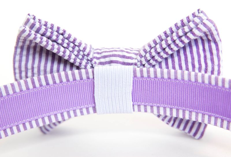 Dog Bow Tie Collar - Purple Seersucker - product images  of