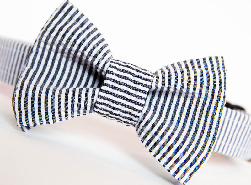 Dog Bow Tie Collar - Black Seersucker - product images  of