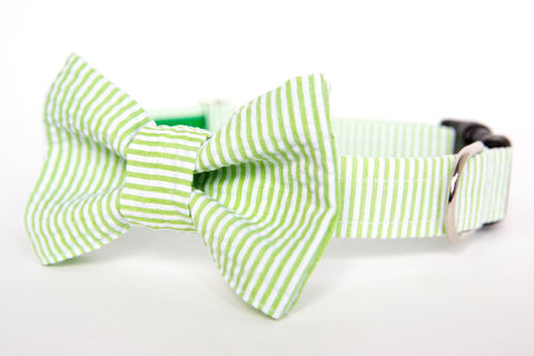 Dog,Bow,Tie,Collar,-,Apple,Green,Seersucker,dog collar, dog bow tie, dog bowtie, bow tie dog collar, bowtie dog collar, wedding dog collar, green, apple green, seersucker, seersucker dog collar