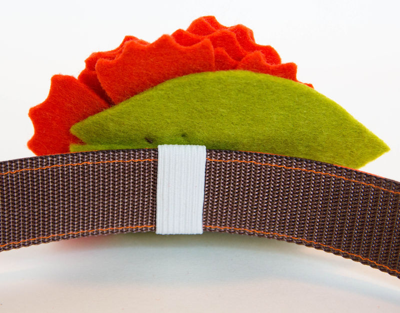 Flower Dog Collar -  Autumn Orange Blossom - product images  of