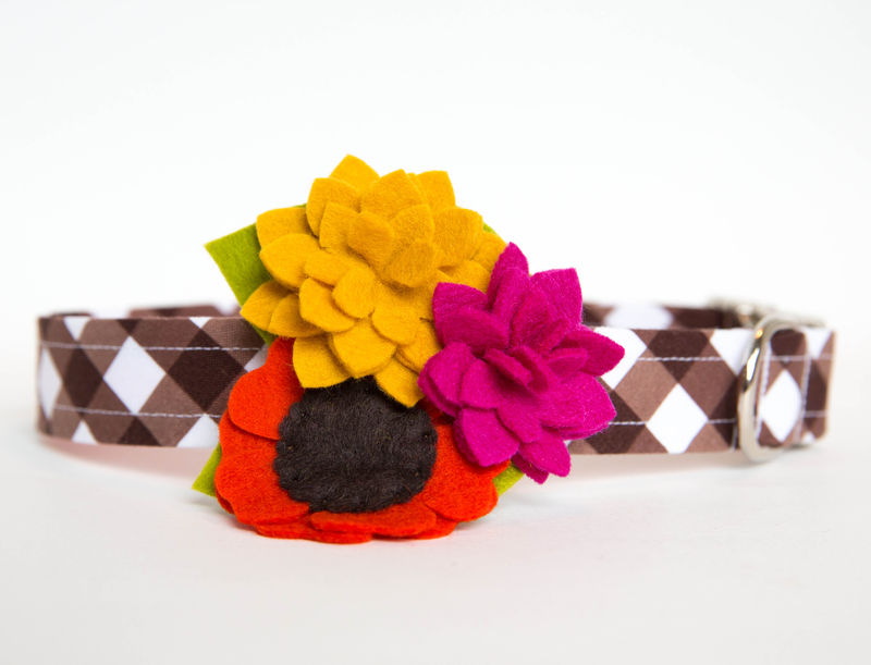 Flower Dog Collar -  Autumn Posey on Brown Gingham - product images  of