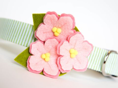 Flower,Dog,Collar,-,Pink,Cherry,Blossoms,on,Seersucker,flower dog collar, dog collar flower, flower for dog collar, felt flower, wedding dog collar, fancy dog collar, unique, dog collar, flower, cherry blossoms, seersucker dog collar, seersucker