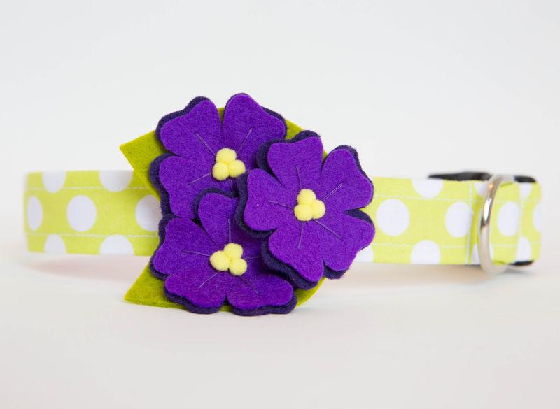 Flower Dog Collar -  Purple Violets Polka Dots - product images  of