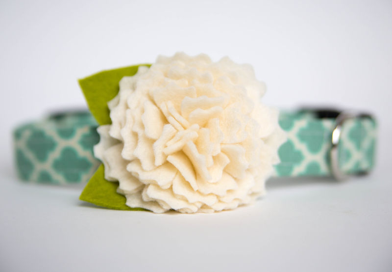 Flower Dog Collar -  Ivory Peony - product images  of