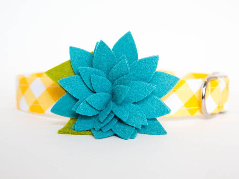 Flower Dog Collar -  Gingham Blue Star Flower - product images  of